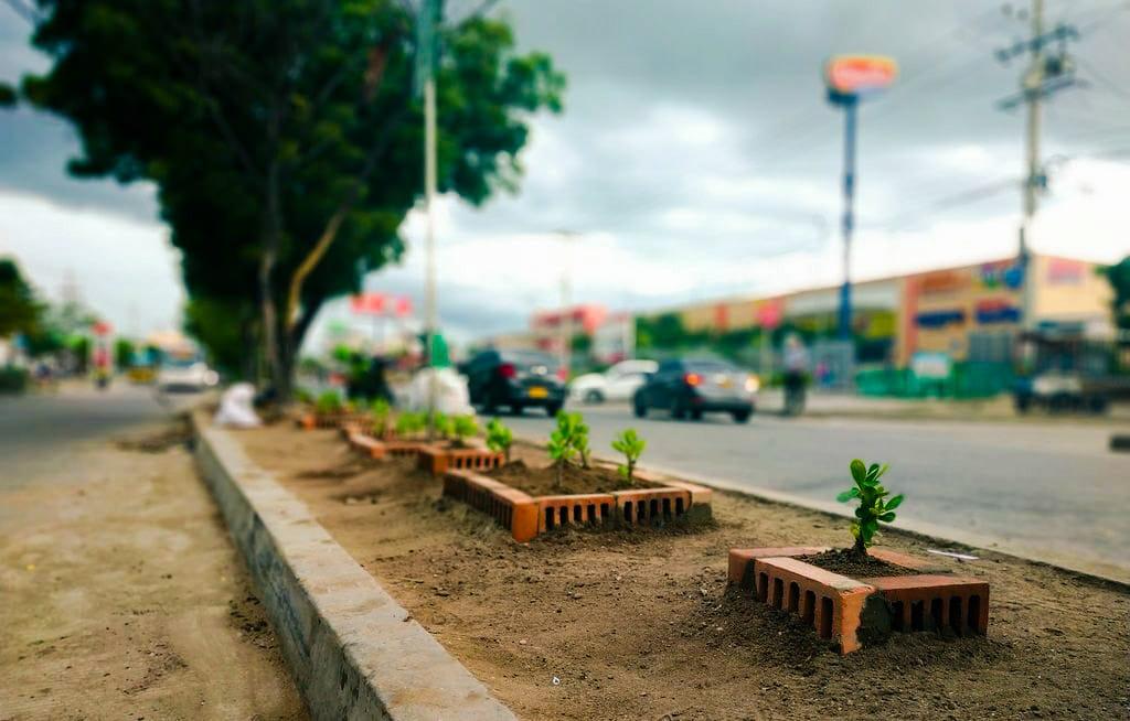 Soledad Avanza En Transformación  De Puntos Críticos En Jardines
