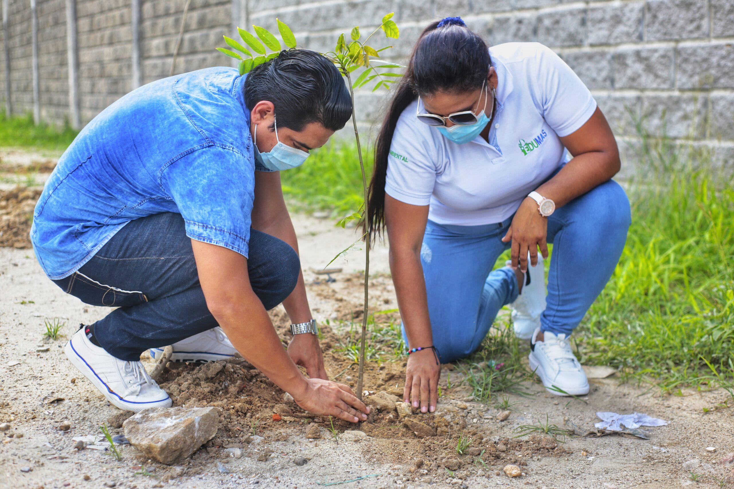 En El Día Mundial Del Árbol, Edumas Conmemora 20 Siembras Más Para Soledad